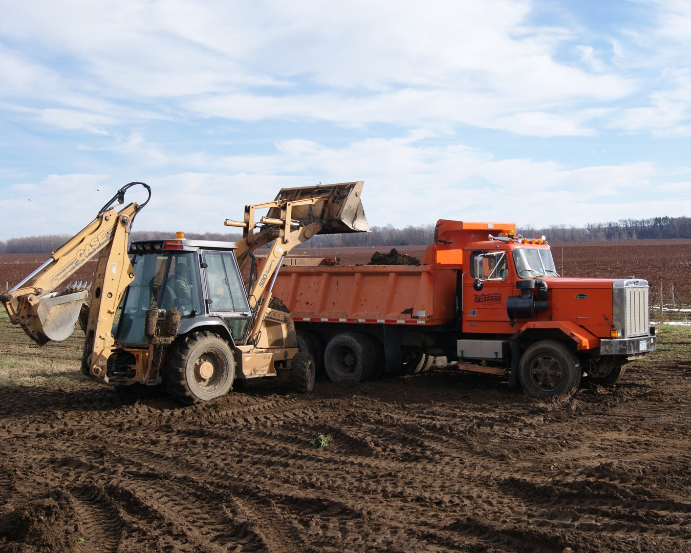 Site Clearing Dumpster Services-Colorado's Premier Dumpster Rental Services